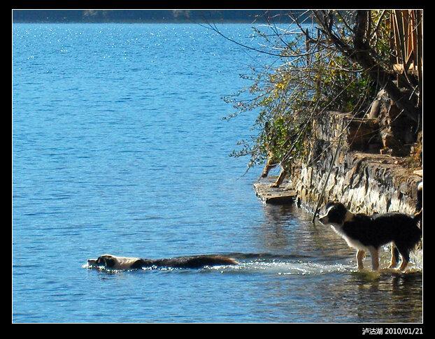 泸沽湖-照片-3
