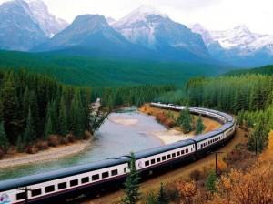 生命的列车